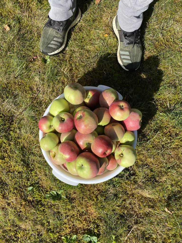 Sunde opskrifter med æbler