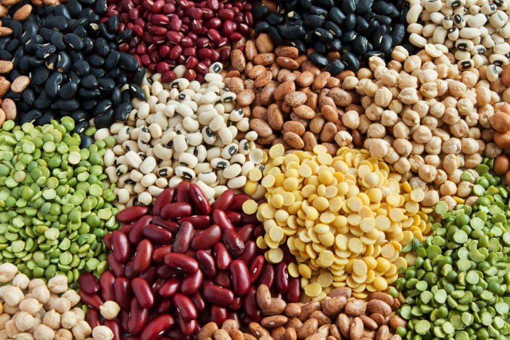 Forskellige typer af bælgfrugter